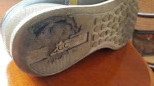 ECCO Sneaker Chander - Schuhsohle zerstört